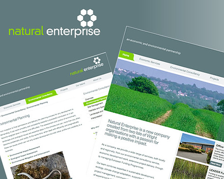 Natural Enterprise website