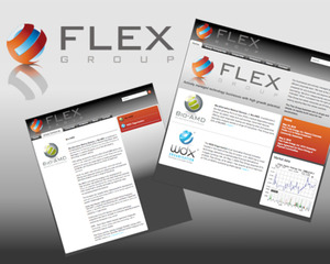 Flex Group website banner